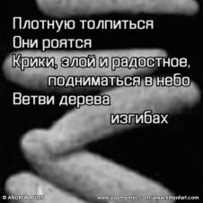 09_19_12_05_STAMPEDE_F_RU